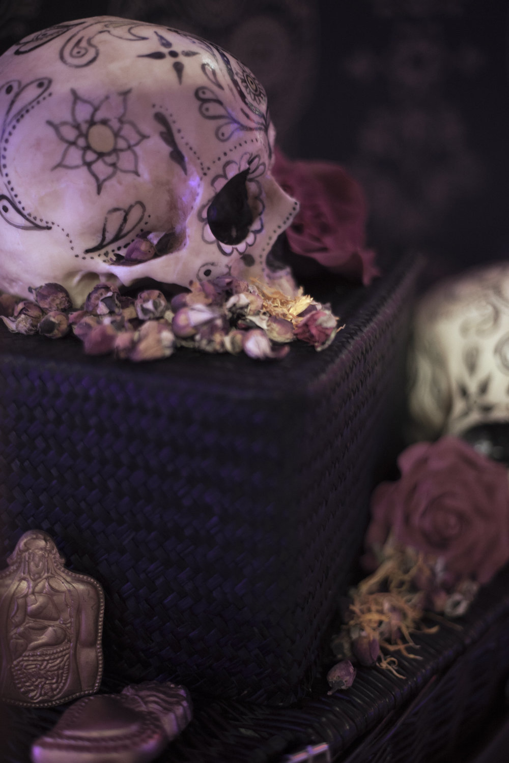 1-The Calavera Cabinet - AVM Curiosities in collaboration with Conjurer's Kitchen and Anatomy Boutique - Photo Reme Campos (3) hi-res.jpg