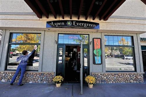 aspen evergreen.jpg