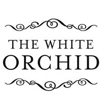 whiteorchid.jpg