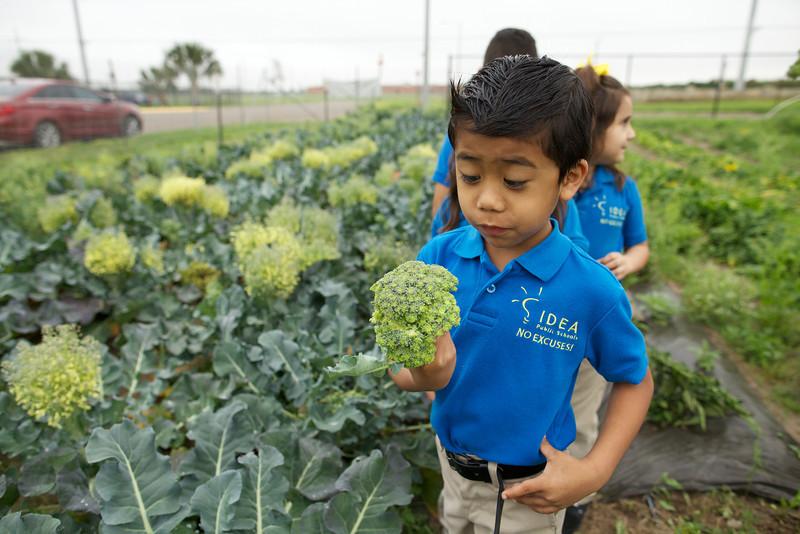 Photo: IDEA Public Schools.
