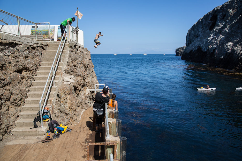 Cliff jumps!