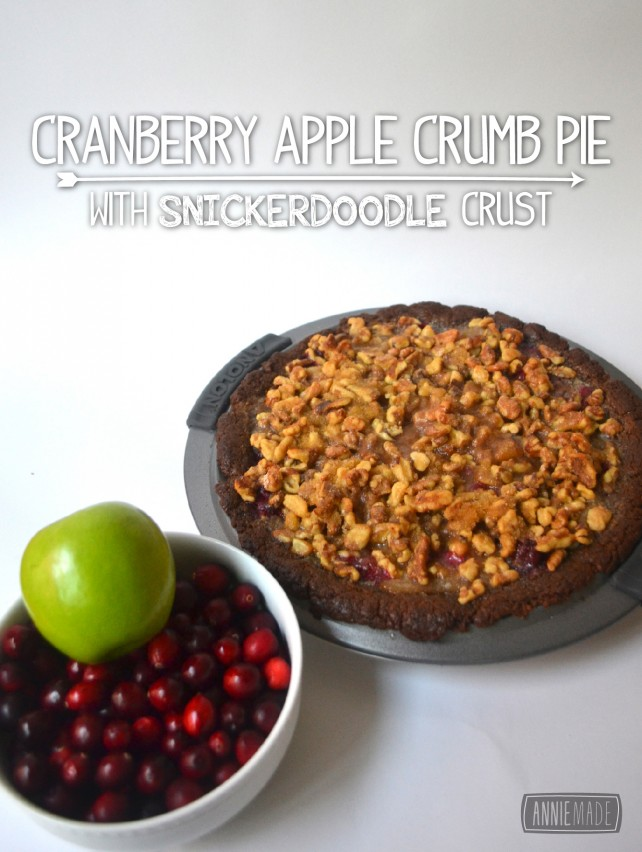 anniemade Easy Apple Cranberry Crumb Pie with Gluten-free Snickerdoodle Cookie Crust