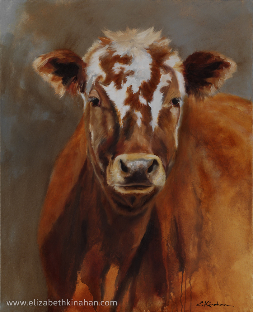 Kelly the Lucky Cow