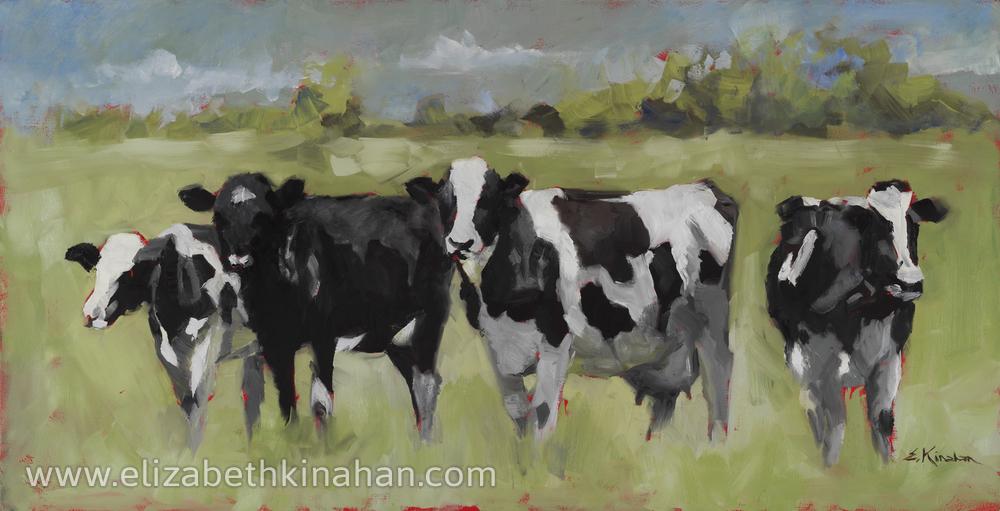 Sellers Holsteins