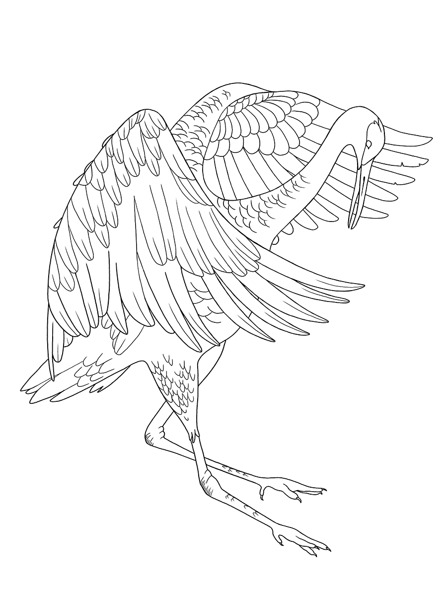 Sandhill crane tattoo design.