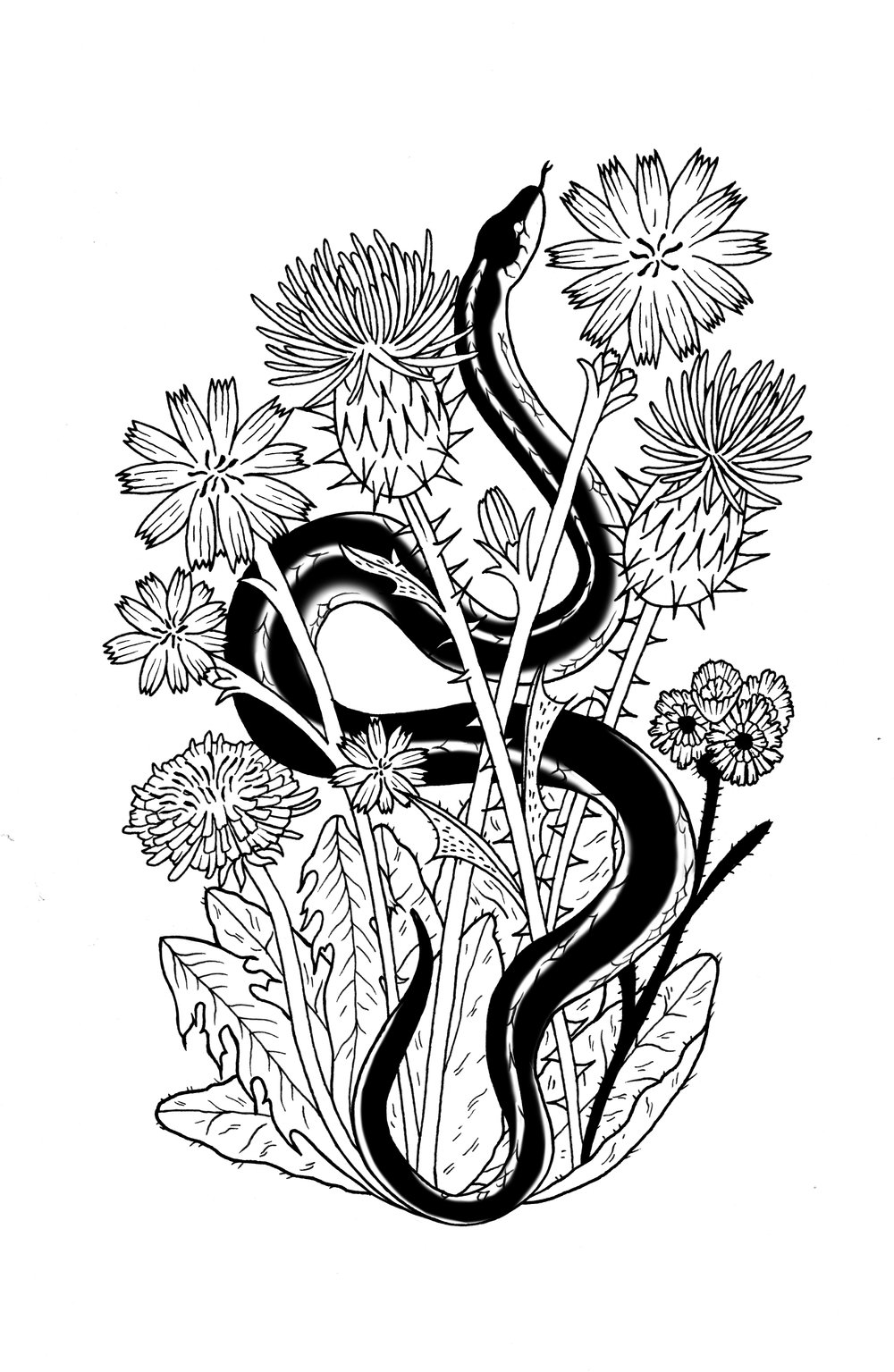 Tattoo design: garter snake and wildflowers.