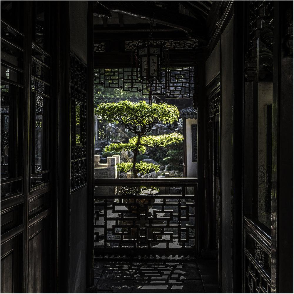 Виды сада Юй Юань