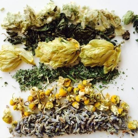 mullein-nettles-hops-catnip-chamomile-lavender