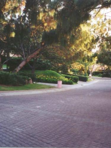 San Miguel de la Colinas street 2.JPG