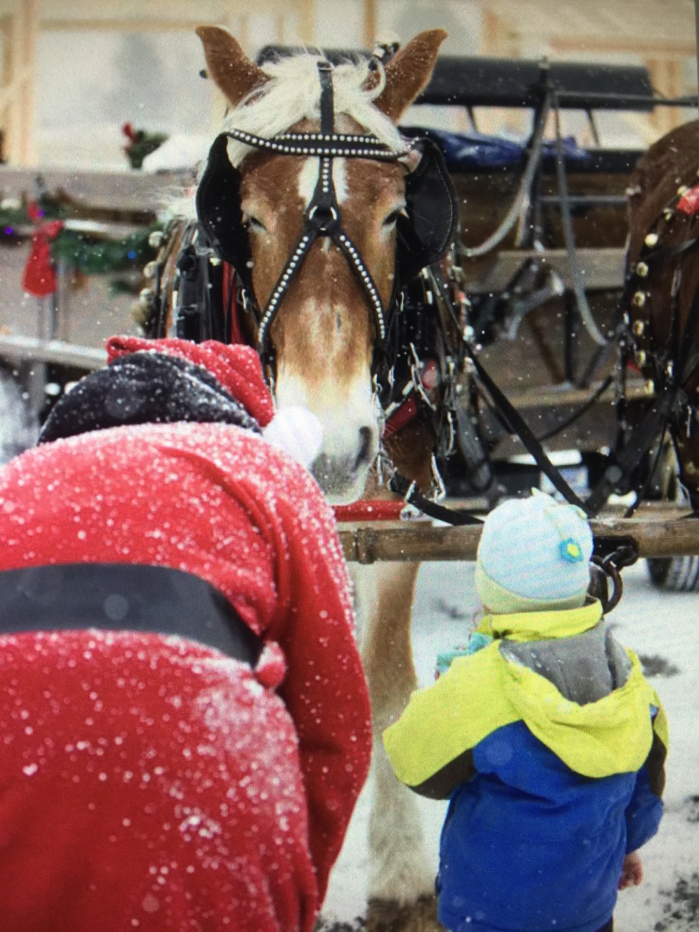 Santa Arrives at The Barn at Smugglers' Notch