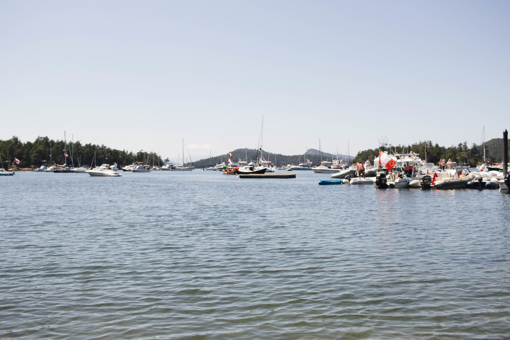 Saturna harbour