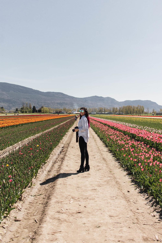 tulip-fest-37.jpg