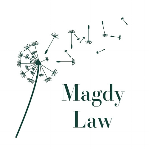 The Law Office of Andrew Magdy