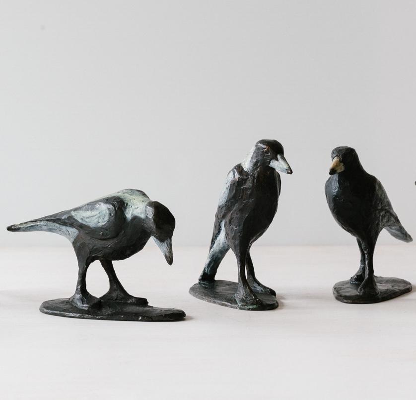 Magpie Family.jpg