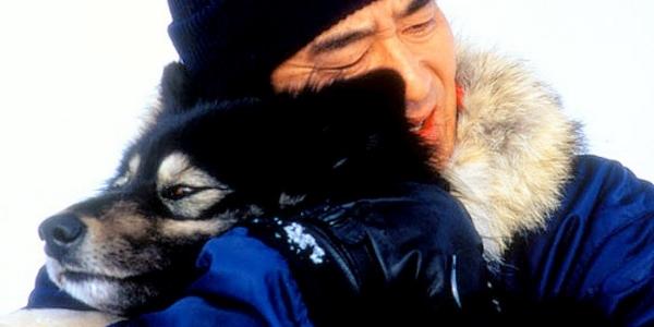 Antarctica  (1983)