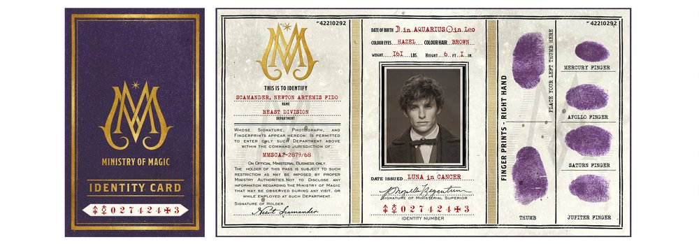 NEWT_SCAMANDER_MINISTRY_OF_MAGIC_ID_CARD_MINALIMA.jpg