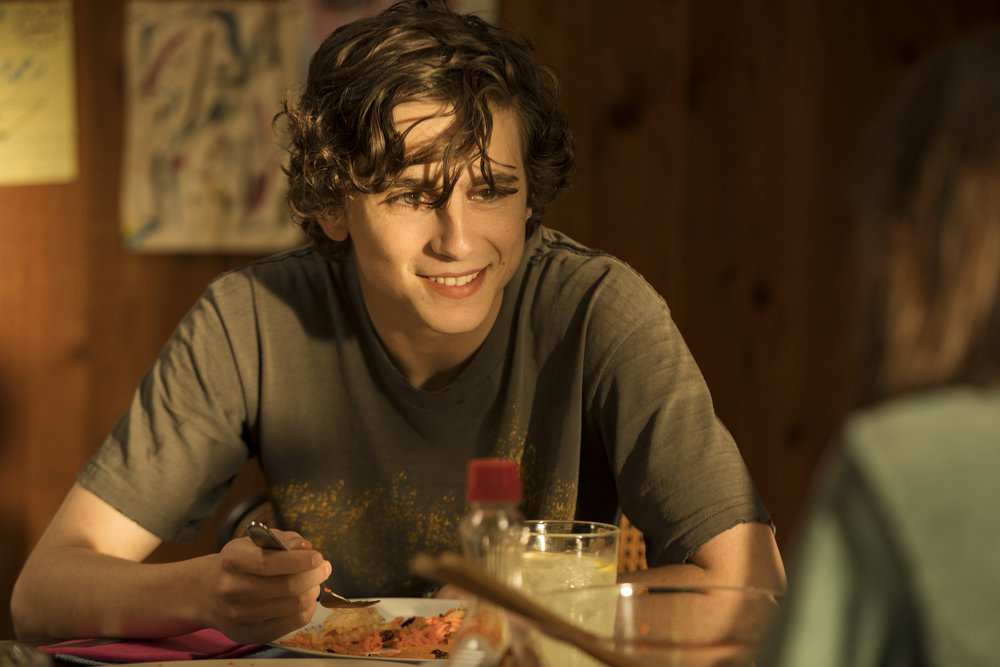 Timothée Chalamet in  Beautiful Boy