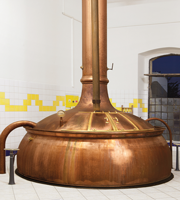CELIA malting tanks in the zatec craft brewery