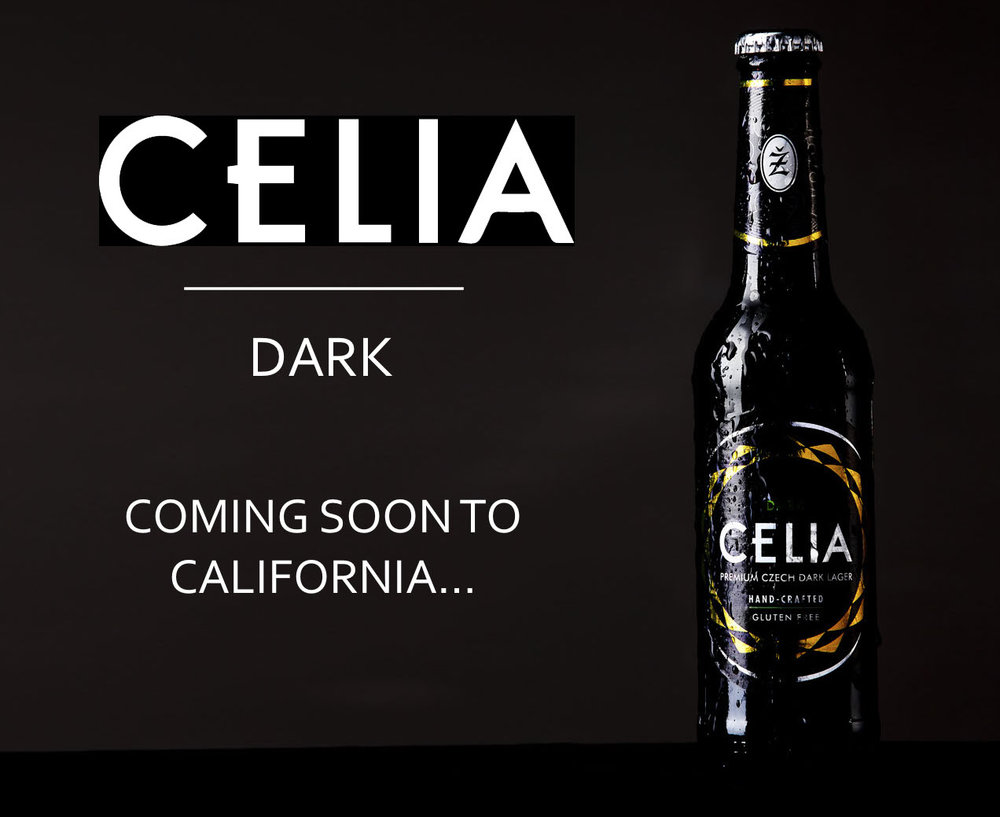 CELIA Dark gluten removed lager