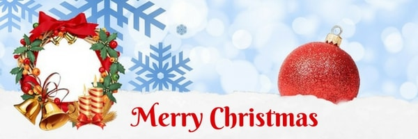 Merry Christmas from Brewer Insurance Services, Inc.jpg