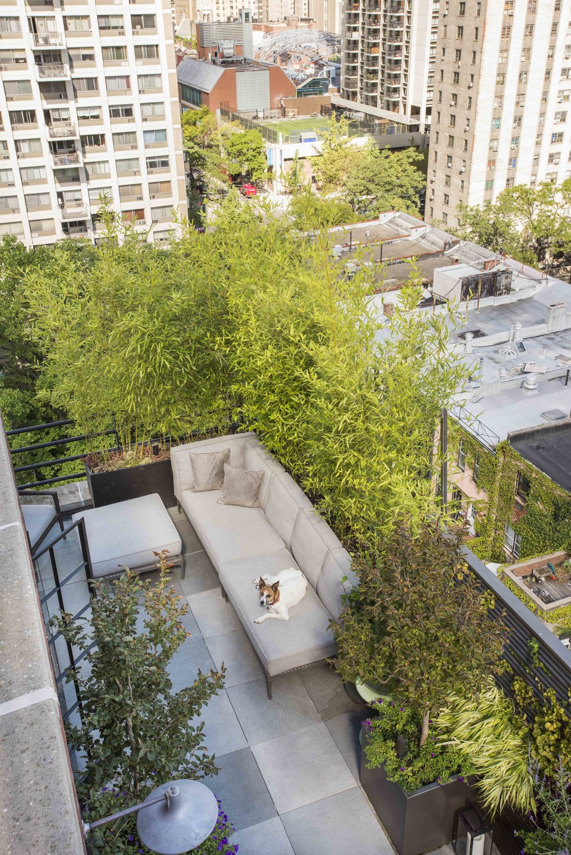 Douglas Terrace 6.jpg