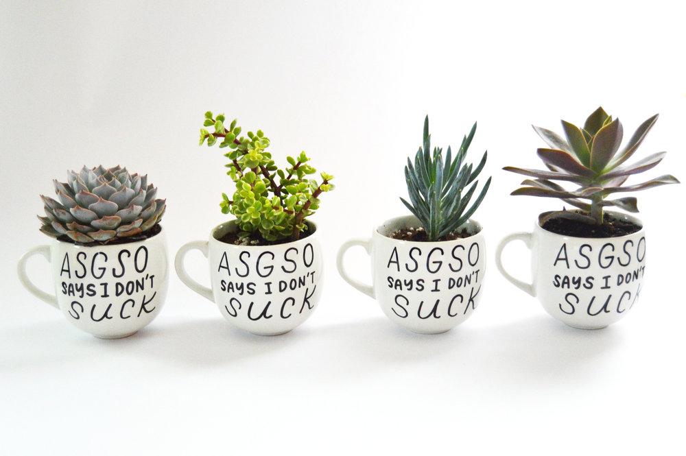 ASGSO mugs.jpg