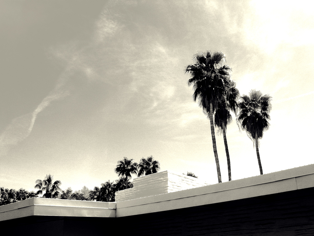 bw-palmsprings-house_1.jpg