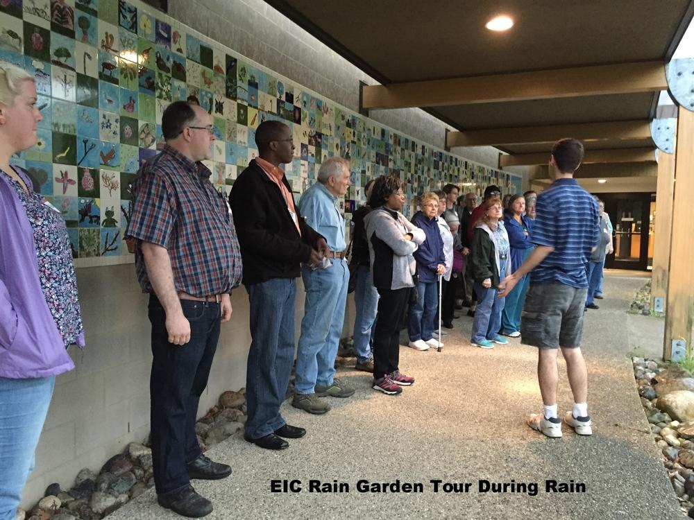 Rain Garden Post Rain.JPG