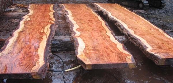 RedwoodSlabs2.jpg