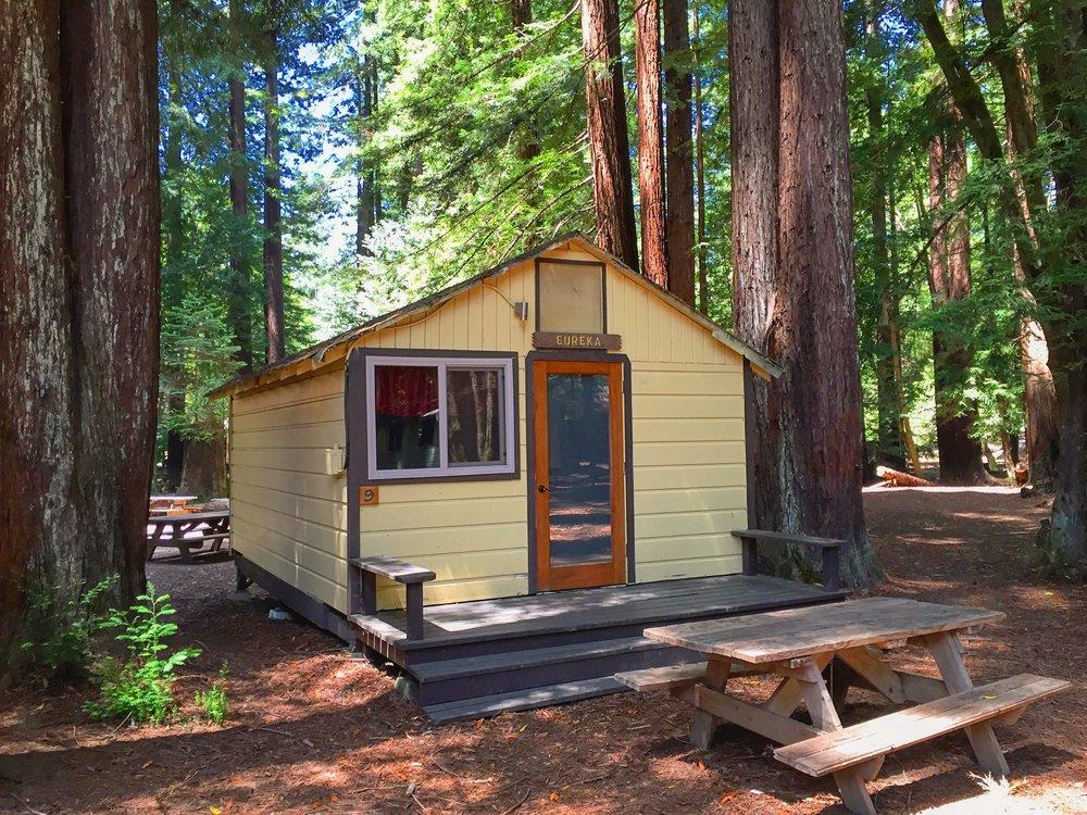 Camp Navarro_Cabin w-Picnic Table_Photo credit Dan Braun.JPG