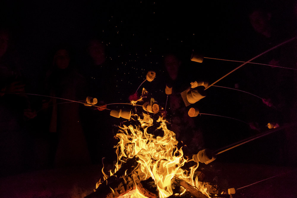 Campfire S'mores