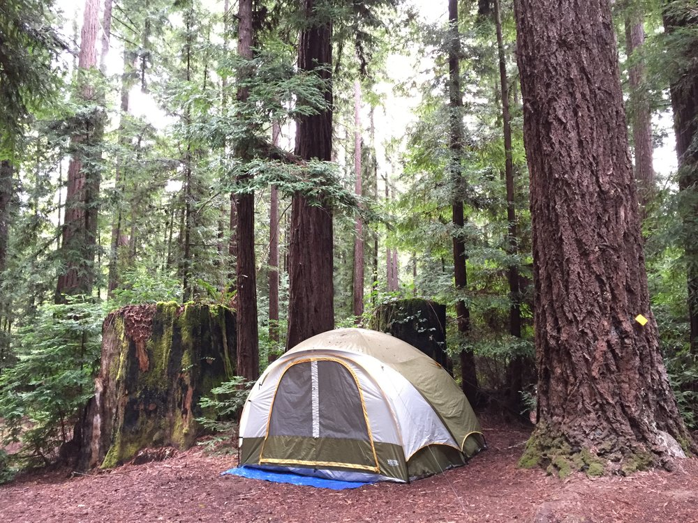 Tent Camping - Bring your own tent and set-up in one of our cabin villages or open redwood groves around the property. There are no designated 'tent sites', just acres of open space to call home for the weekend. Bathrooms, water and showers are found around the property as well as picnic tables. Price is per party/tent.