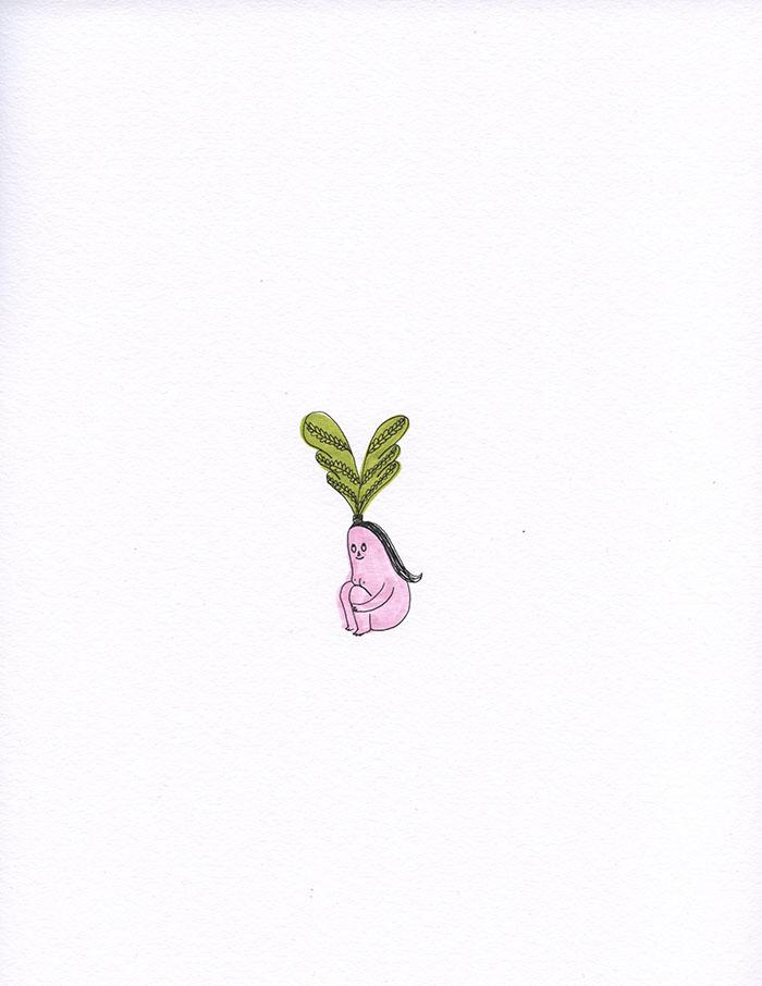 Husa Plant