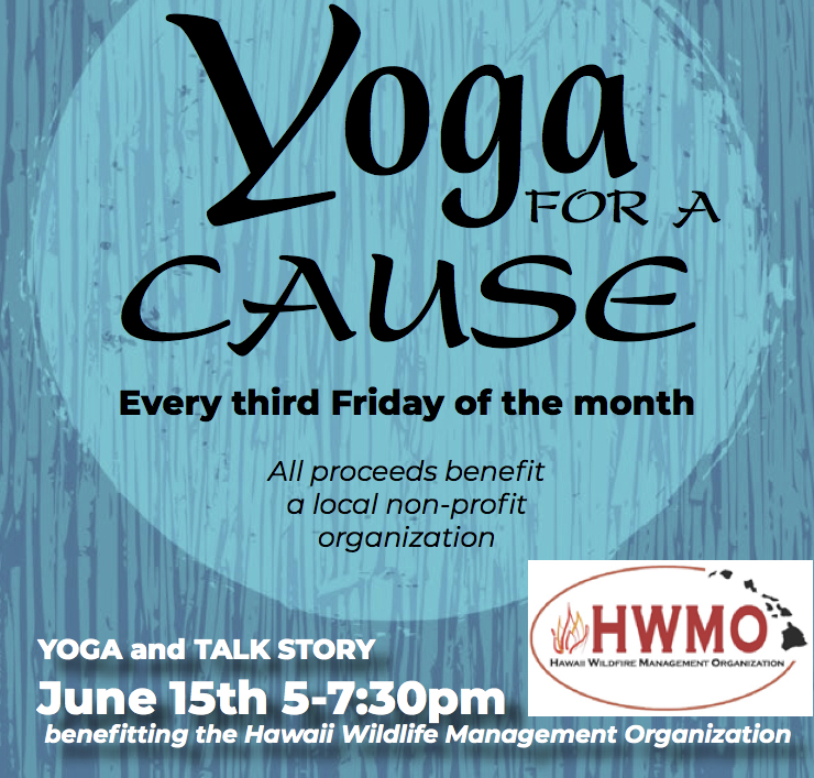 Yoga For A Cause - HWMO