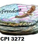 cpi3272.jpg