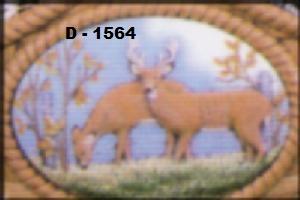 D1564.jpg