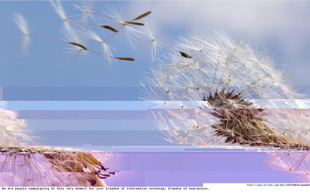 Screenshot 2015-08-25 01.00.37.png