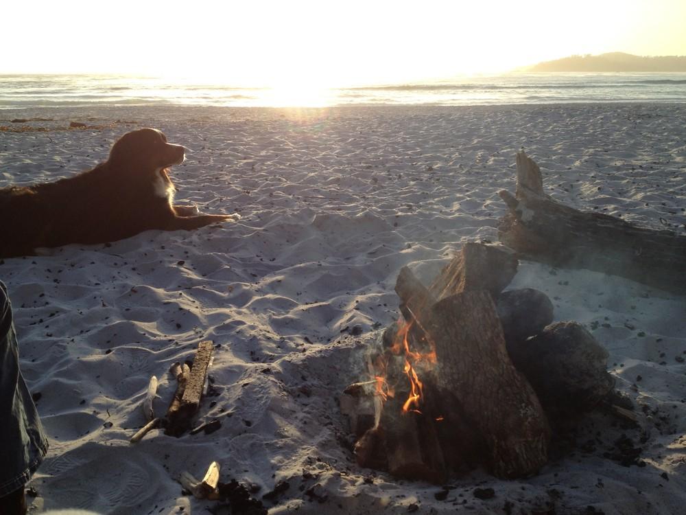 beachfire06.jpg