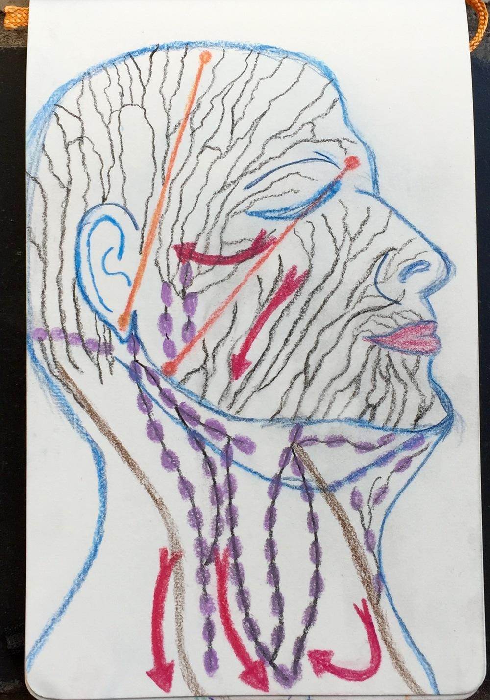 """""""Pearls Before Swine"""" Pencil & Ink"""