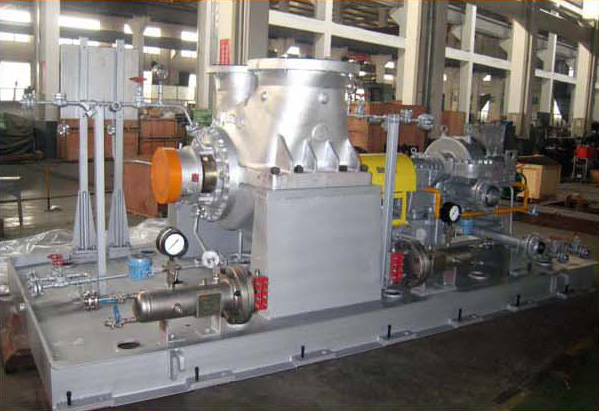 Heavy duty process pump driven by steam turbine