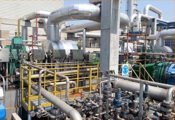 Water circulation pump driven by steam turbine