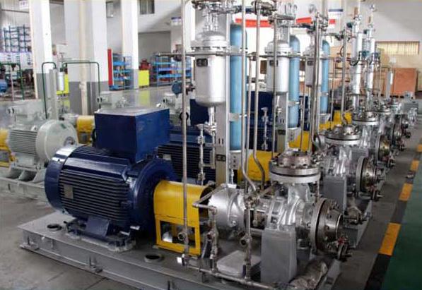 Petrochmical process pump for cyclohexanone device
