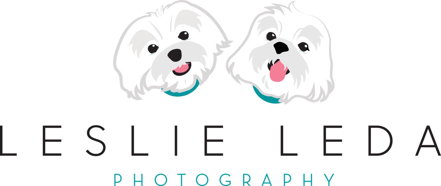 Leslie Leda Photography LLC