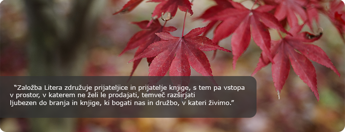 litera_header.png