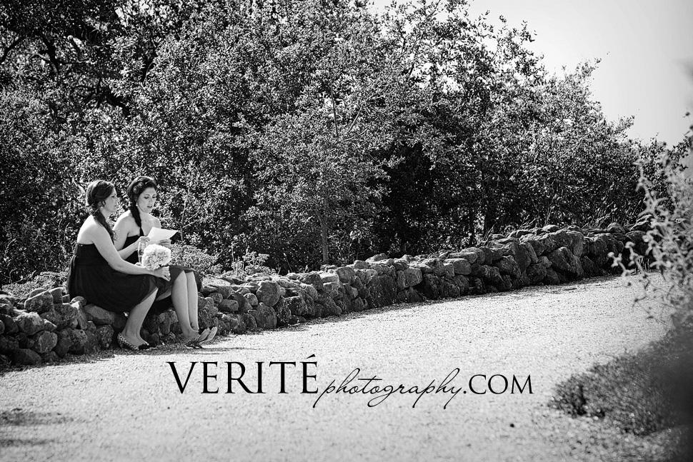 019san_francisco_wedding_photographer_andcra023.jpg