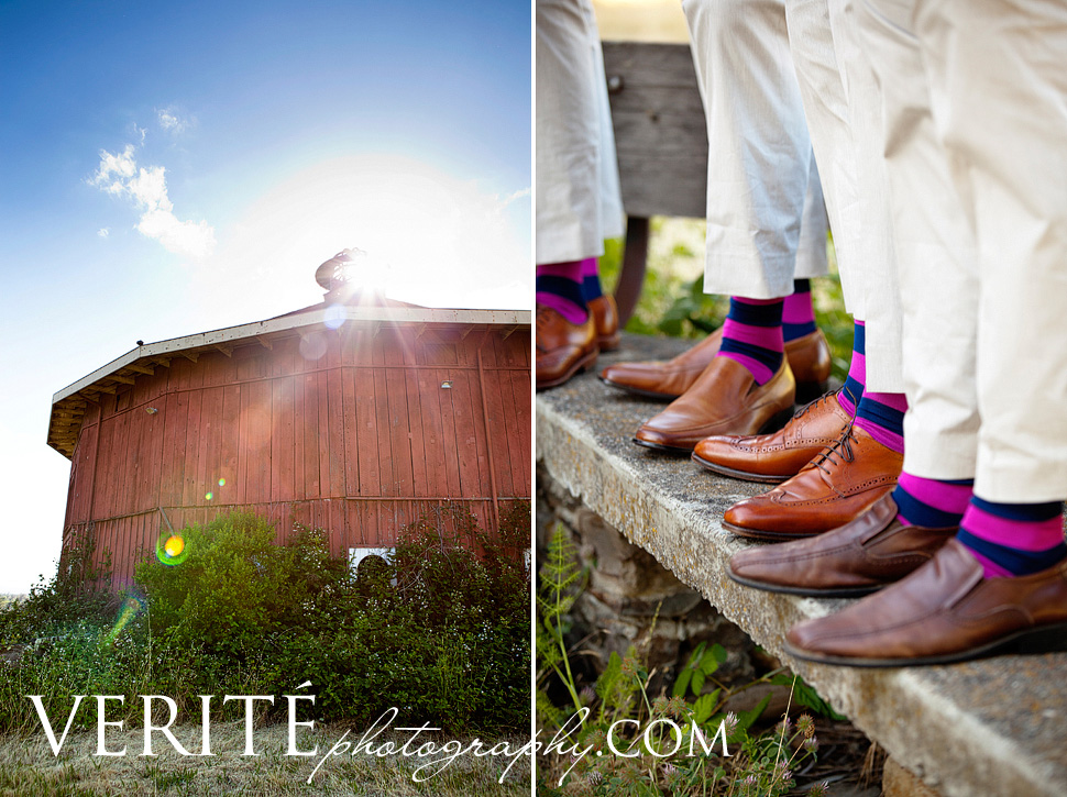020san_francisco_wedding_photographer_andcra026.jpg