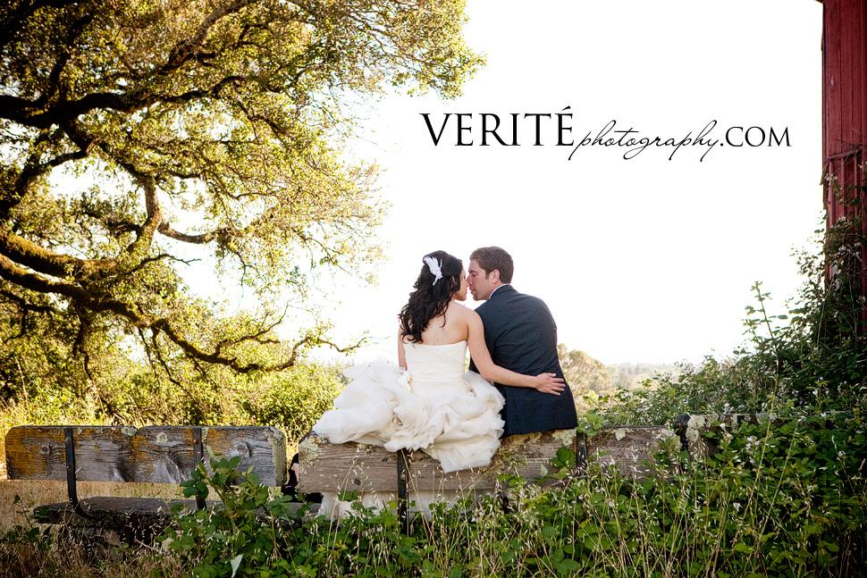 025san_francisco_wedding_photographer_andcra032.jpg