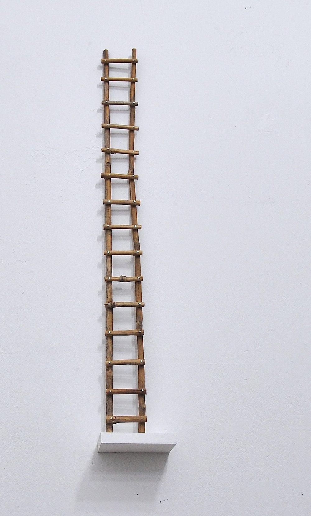 bamboo ladder.jpg