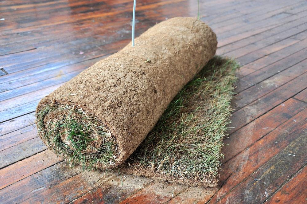 Extract 5- grass carpet detail.jpg