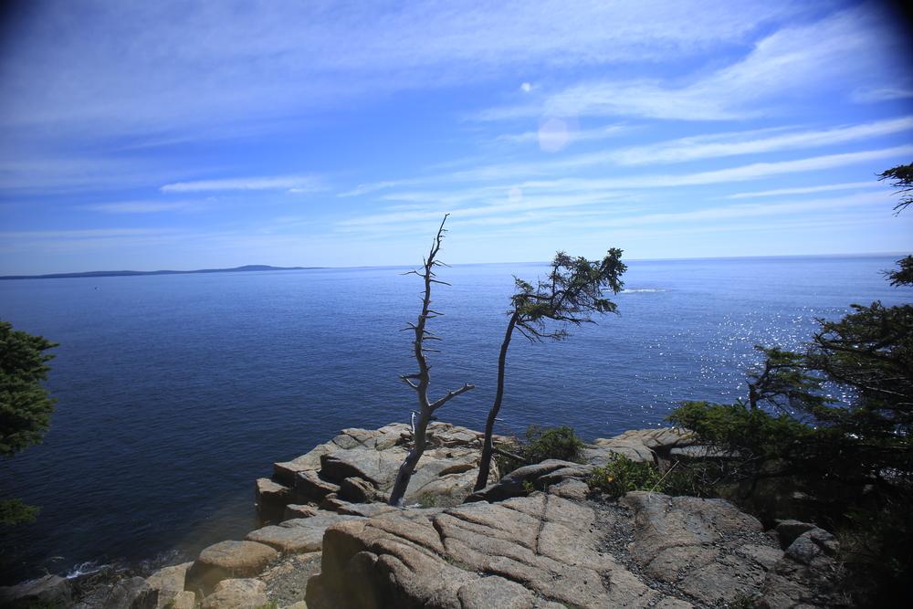 Acadian Coast